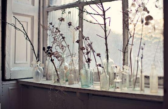 tarros-y-botellas-con-plantas-secas